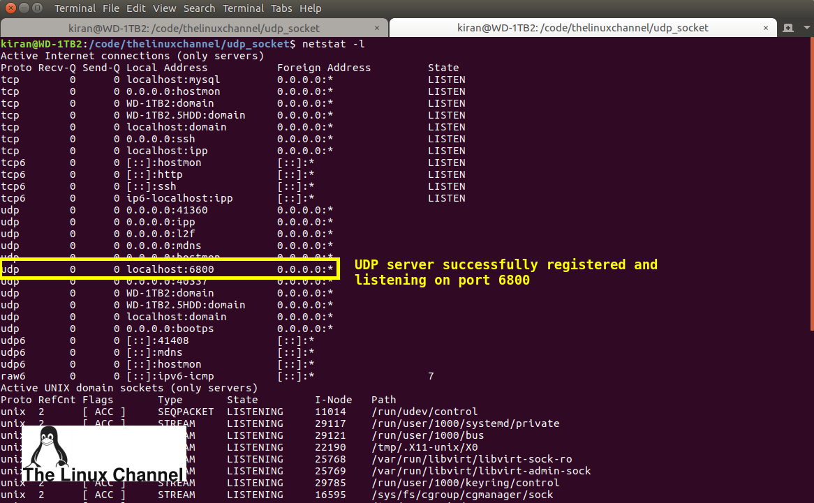 with netstat check the status of udp server registration